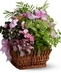 Planter Baskets