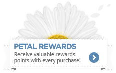 Just like Visa & Master Card, you earn points with every purchase.